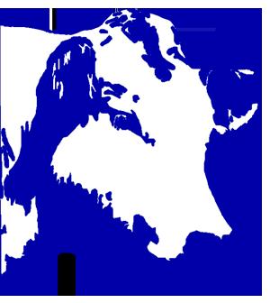 Herd Book Blanc Bleu Belge